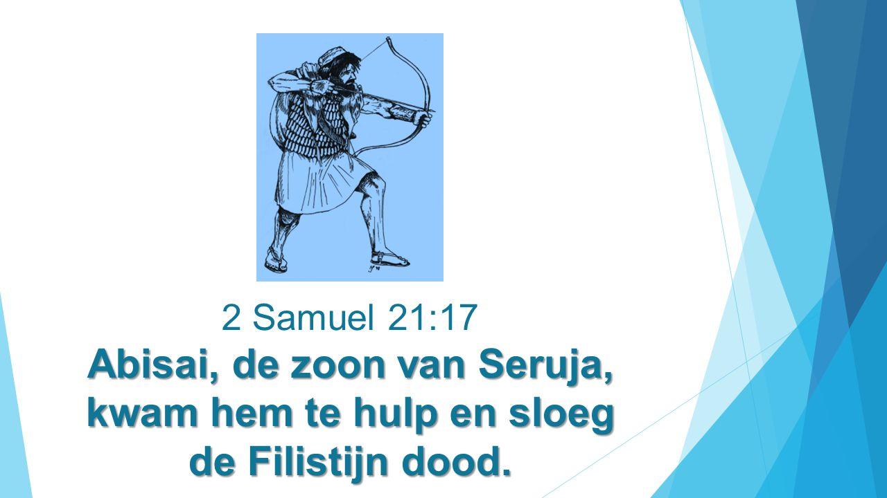 Abisai, de zoon van Seruja, kwam hem te hulp en sloeg