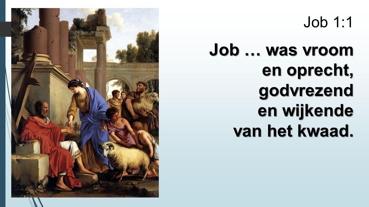 Job … was vroom en oprecht, godvrezend en wijkende van het kwaad.