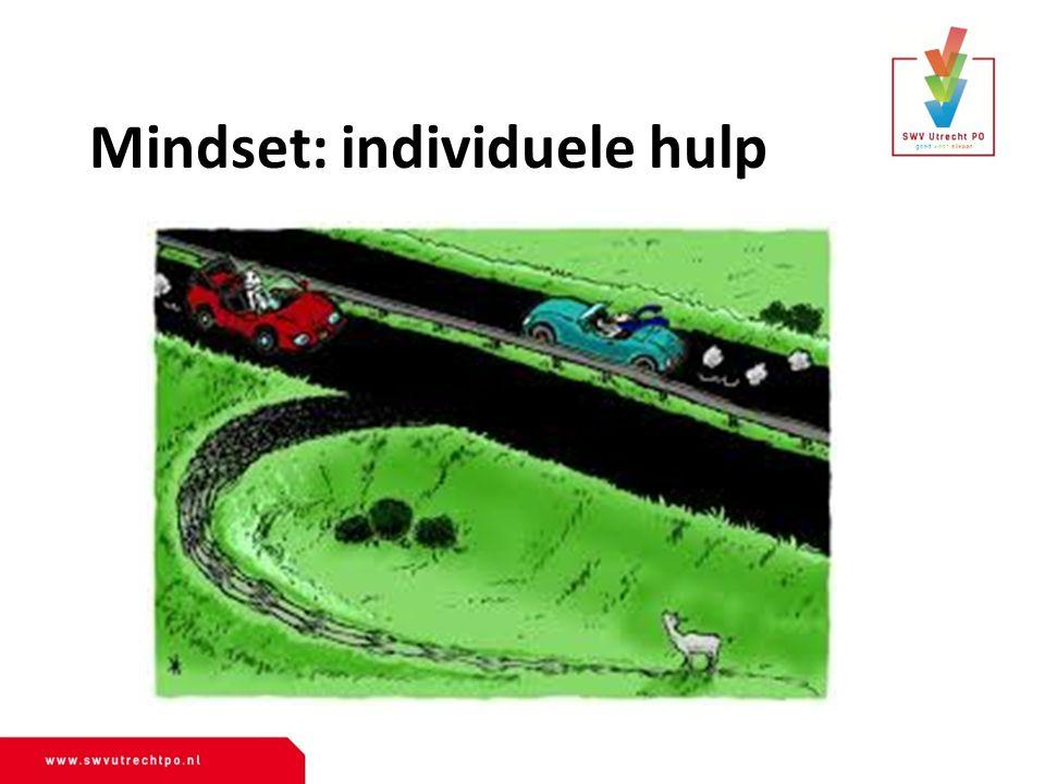 Mindset: individuele hulp