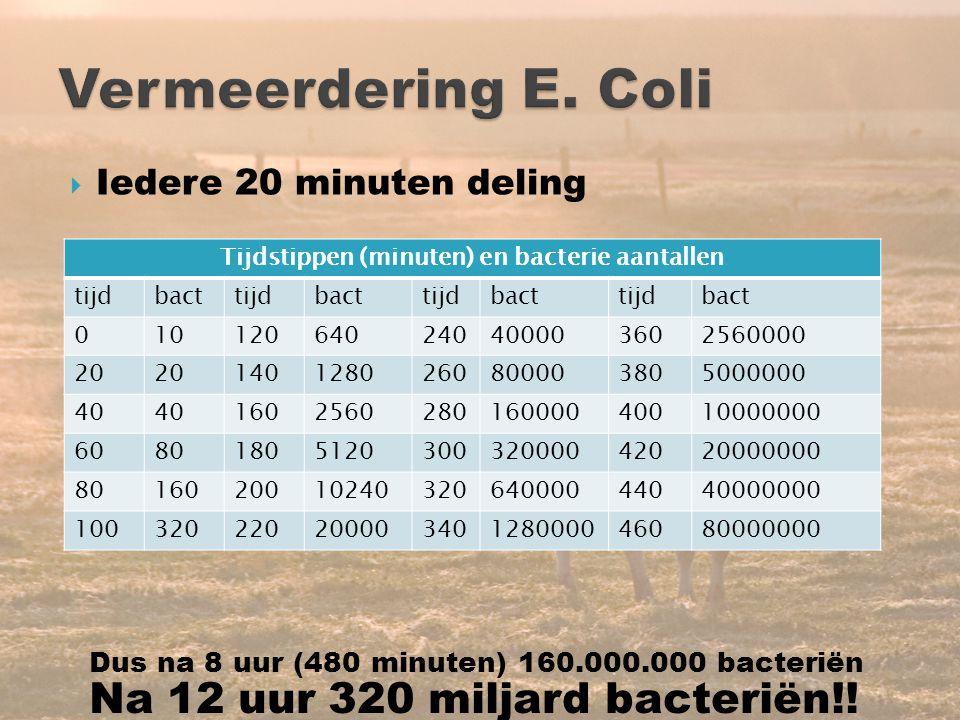 Tijdstippen (minuten) en bacterie aantallen