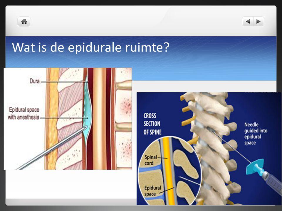 Wat is de epidurale ruimte