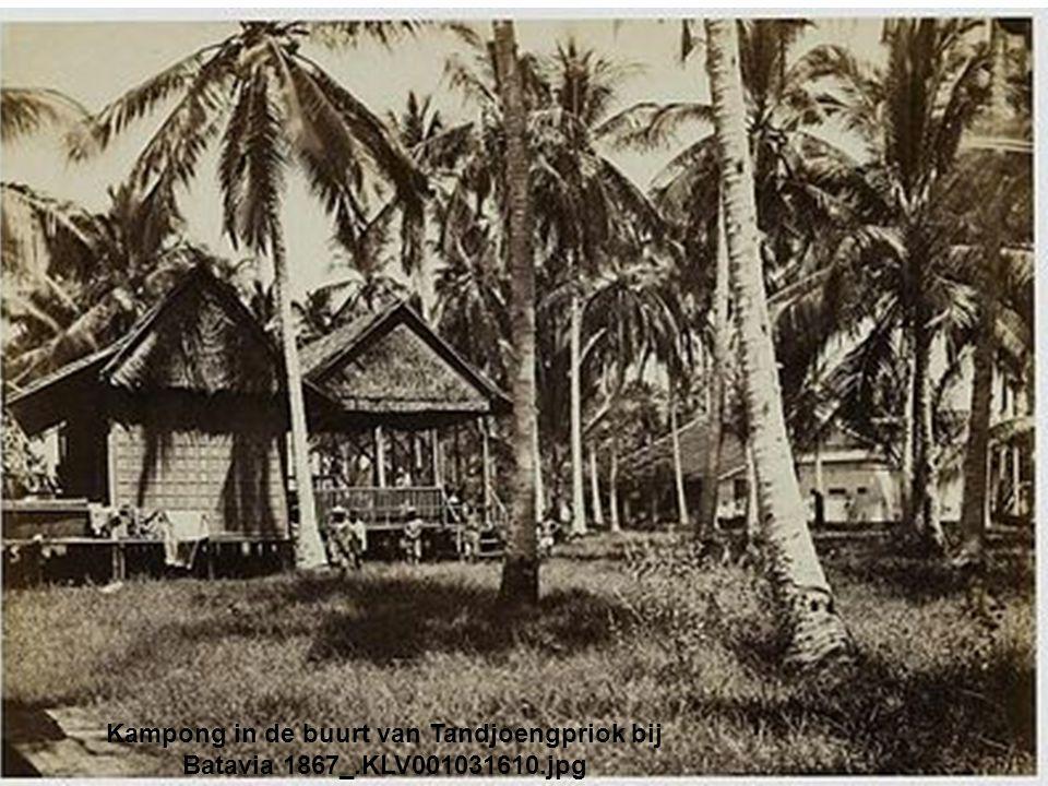 Kampong in de buurt van Tandjoengpriok bij Batavia 1867_. KLV001031610