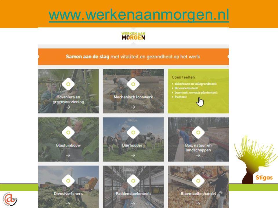 www.werkenaanmorgen.nl Als je met je muis over de hoofdsectoren gaat, zie je de sub-sectoren.