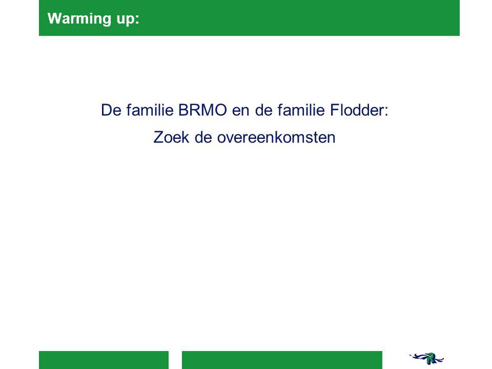 De familie BRMO en de familie Flodder: Zoek de overeenkomsten