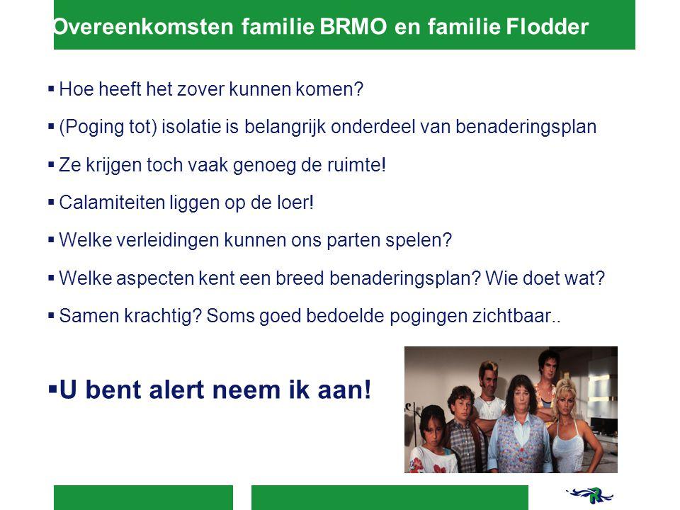 Overeenkomsten familie BRMO en familie Flodder