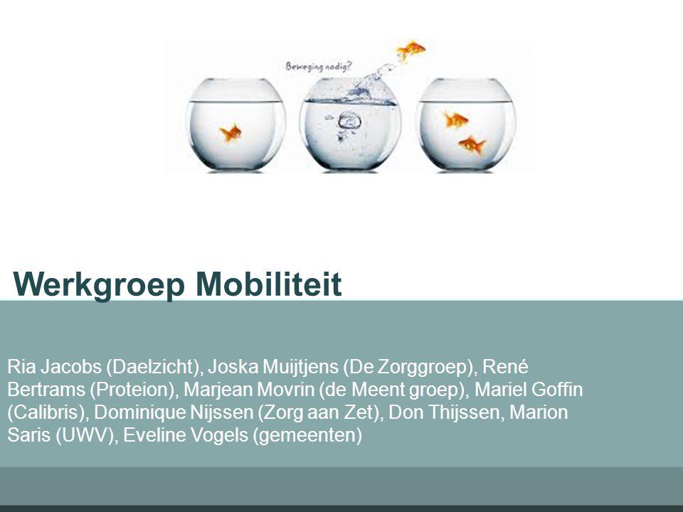 Werkgroep Mobiliteit