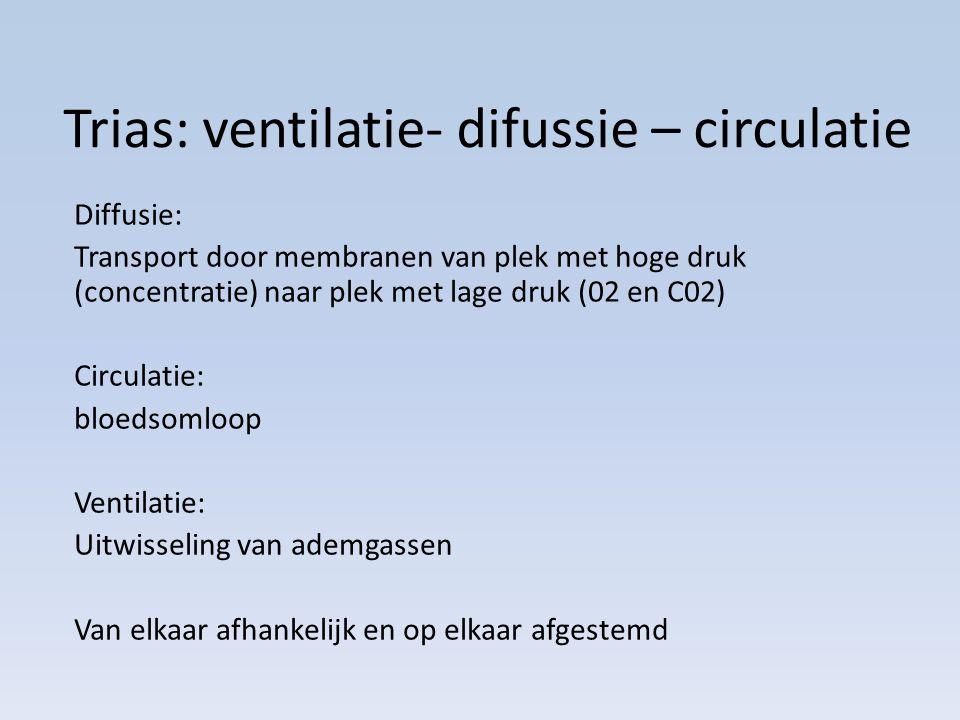 Trias: ventilatie- difussie – circulatie
