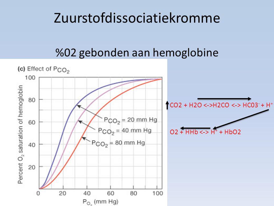 Zuurstofdissociatiekromme %02 gebonden aan hemoglobine