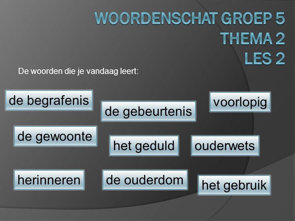 Woordenschat groep 5 Thema 2 Les 2
