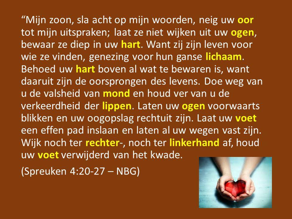 Mijn zoon, sla acht op mijn woorden, neig uw oor tot mijn uitspraken; laat ze niet wijken uit uw ogen, bewaar ze diep in uw hart.