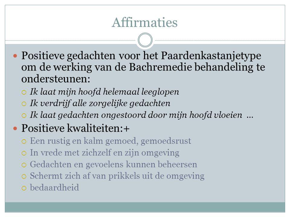 Affirmaties Positieve gedachten voor het Paardenkastanjetype om de werking van de Bachremedie behandeling te ondersteunen: