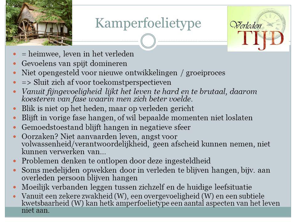 Kamperfoelietype = heimwee, leven in het verleden