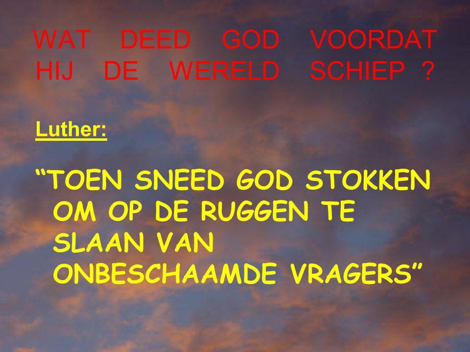 WAT DEED GOD VOORDAT HIJ DE WERELD SCHIEP