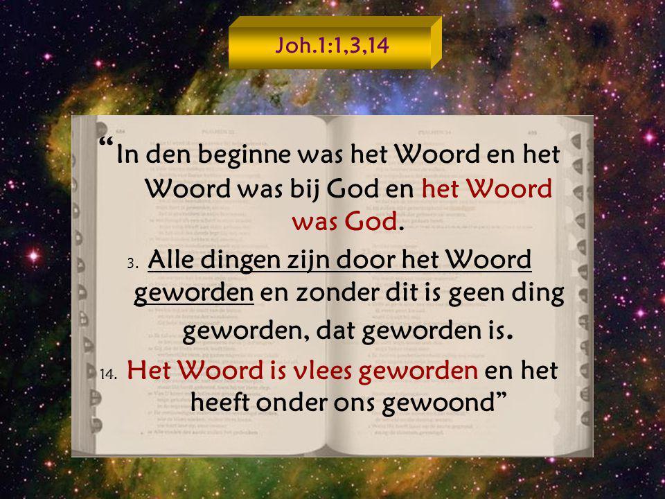 14. Het Woord is vlees geworden en het heeft onder ons gewoond