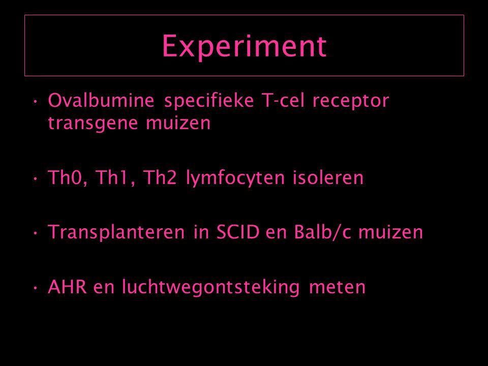 Experiment Ovalbumine specifieke T-cel receptor transgene muizen
