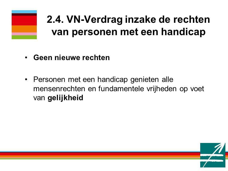 2.4. VN-Verdrag inzake de rechten van personen met een handicap