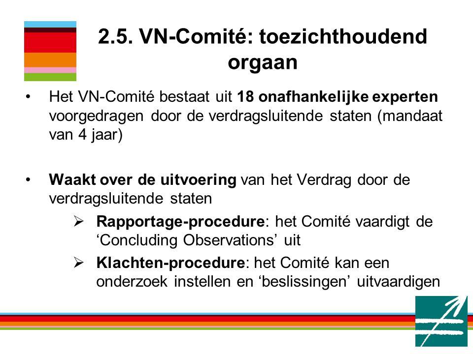 2.5. VN-Comité: toezichthoudend orgaan