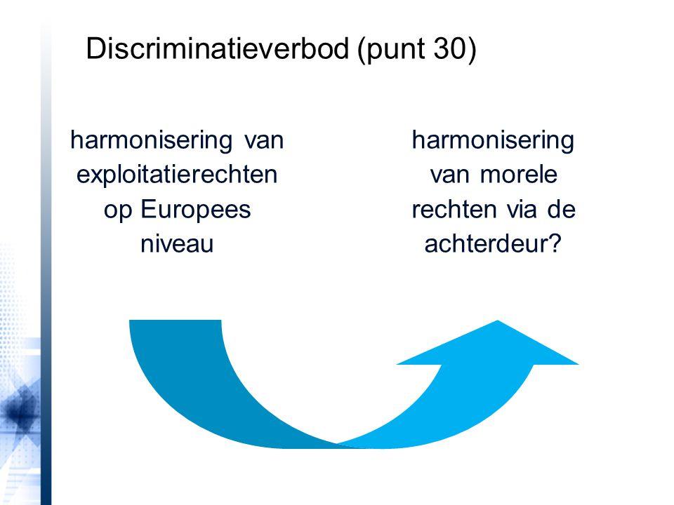 Discriminatieverbod (punt 30)