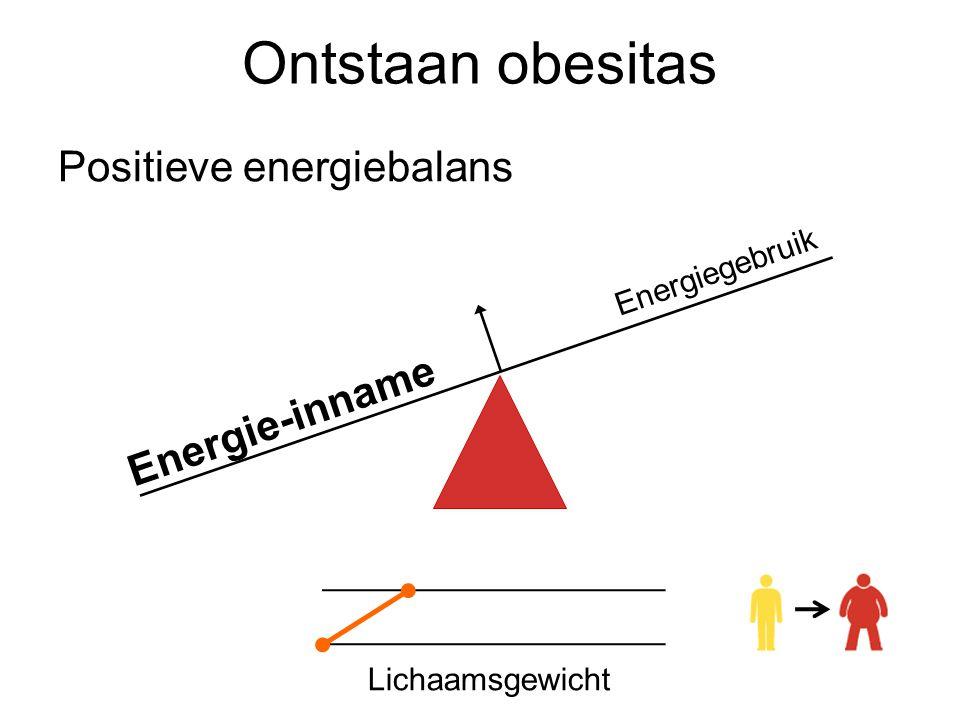 Ontstaan obesitas Positieve energiebalans Energie-inname
