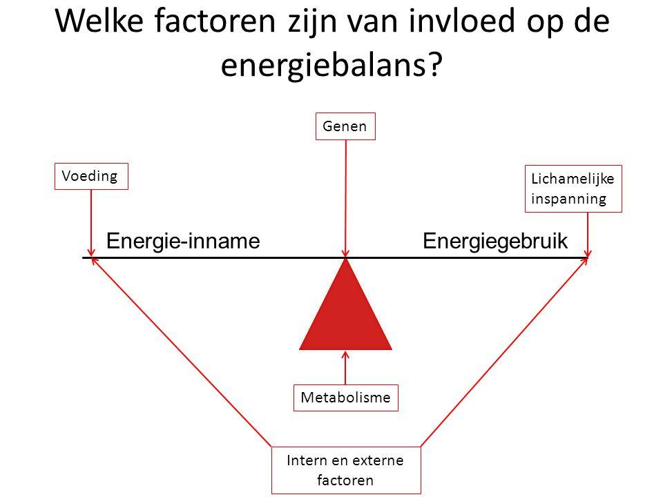 Welke factoren zijn van invloed op de energiebalans
