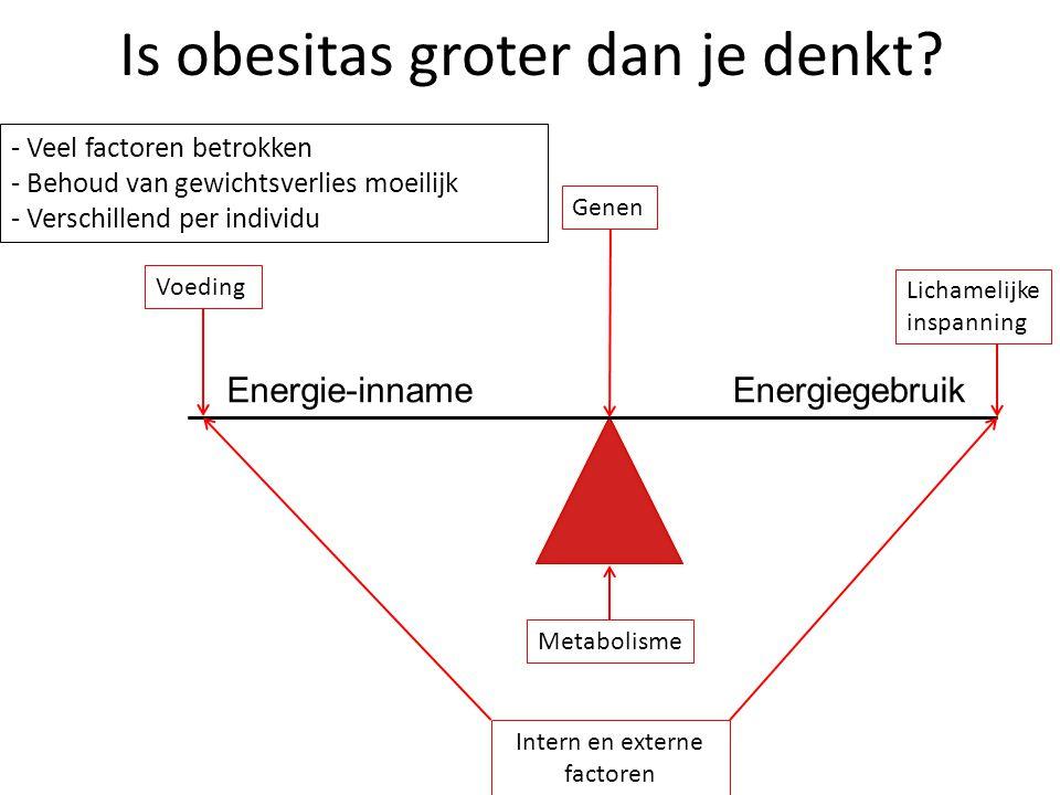 Is obesitas groter dan je denkt