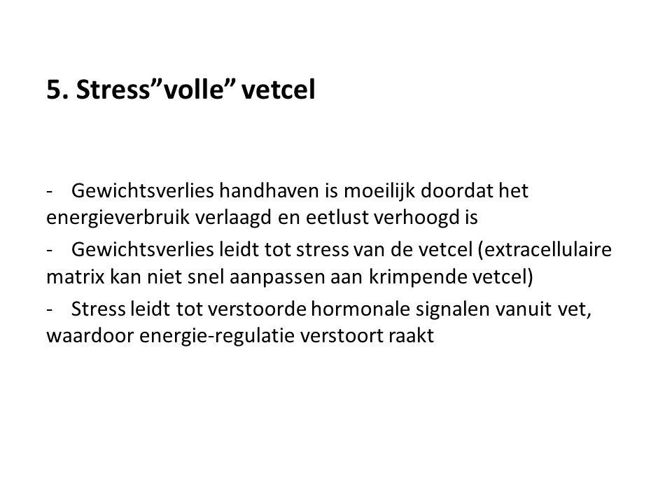 5. Stress volle vetcel Gewichtsverlies handhaven is moeilijk doordat het energieverbruik verlaagd en eetlust verhoogd is.