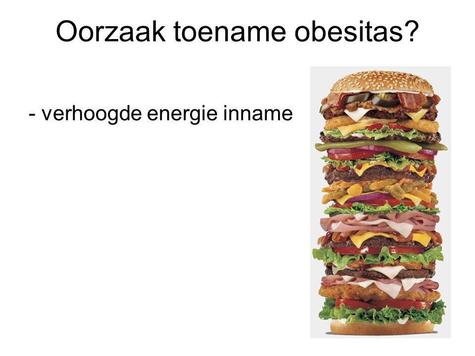 Oorzaak toename obesitas