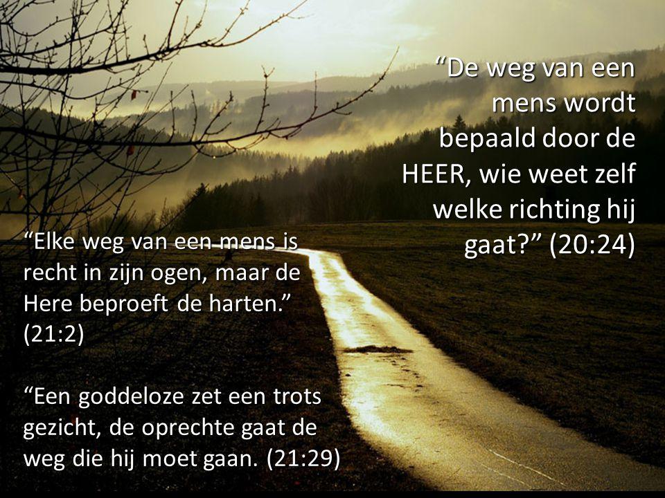 De weg van een mens wordt bepaald door de HEER, wie weet zelf welke richting hij gaat (20:24)