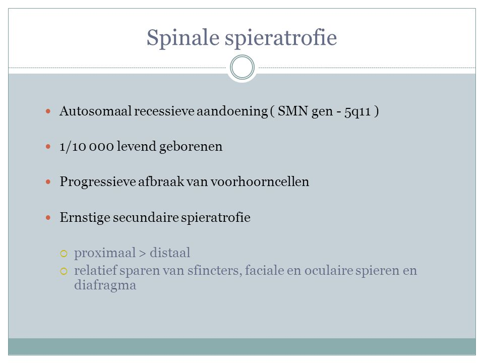 Spinale spieratrofie Autosomaal recessieve aandoening ( SMN gen - 5q11 ) 1/10 000 levend geborenen.