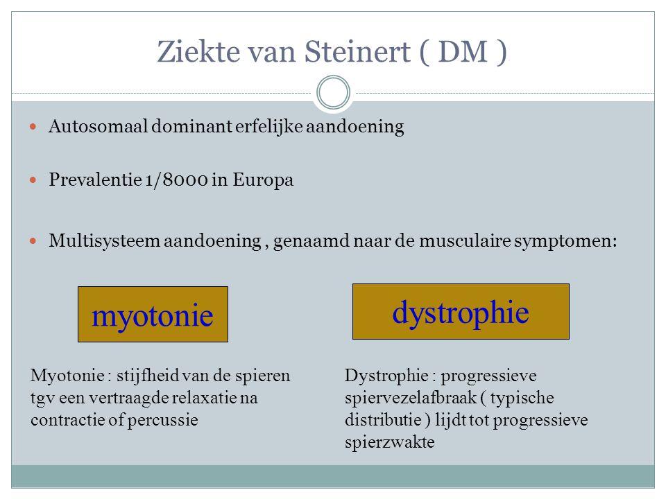 Ziekte van Steinert ( DM )