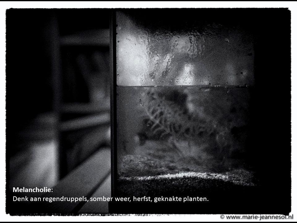 Melancholie: Denk aan regendruppels, somber weer, herfst, geknakte planten.