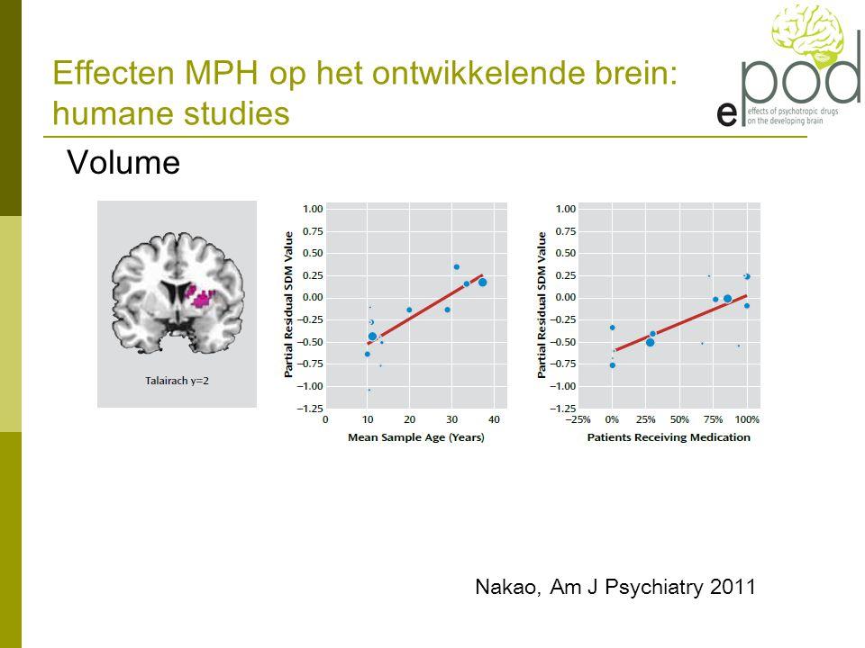 Effecten MPH op het ontwikkelende brein: humane studies