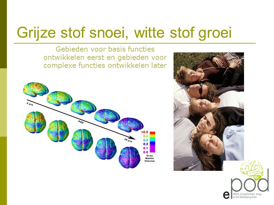 Grijze stof snoei, witte stof groei
