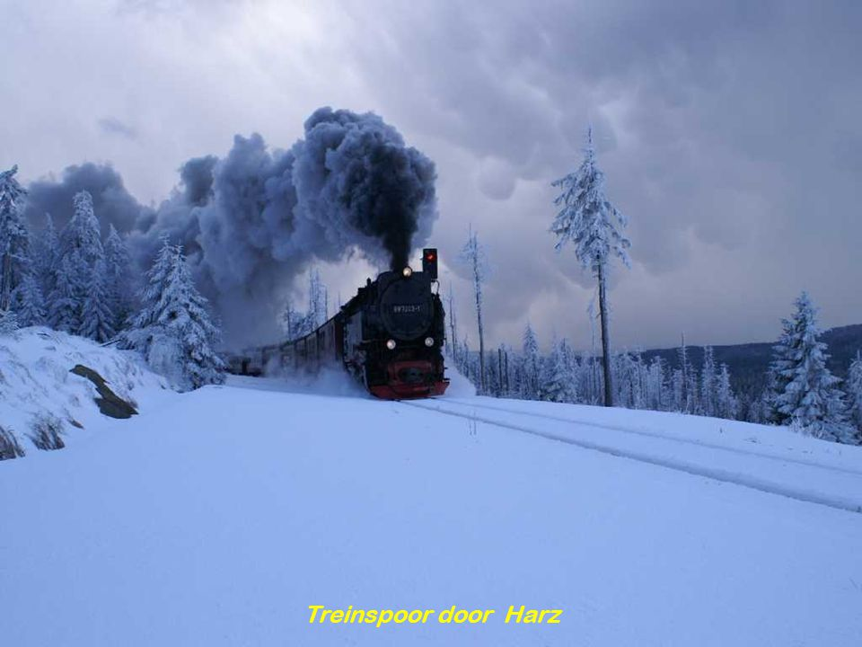 Treinspoor door Harz