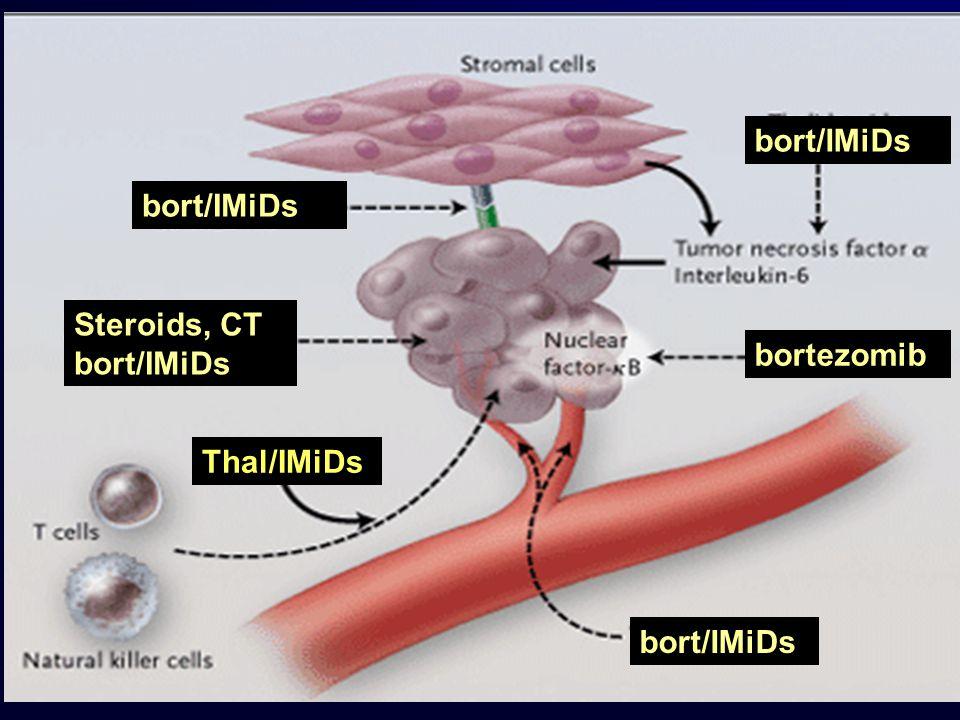 bort/IMiDs bort/IMiDs Steroids, CT bort/IMiDs bortezomib Thal/IMiDs bort/IMiDs