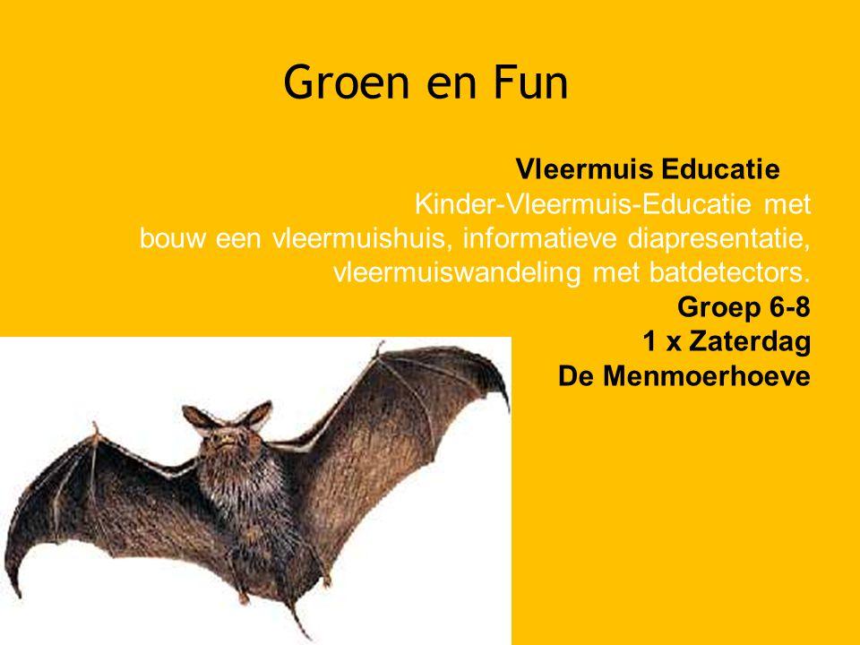 Groen en Fun Vleermuis Educatie Kinder-Vleermuis-Educatie met