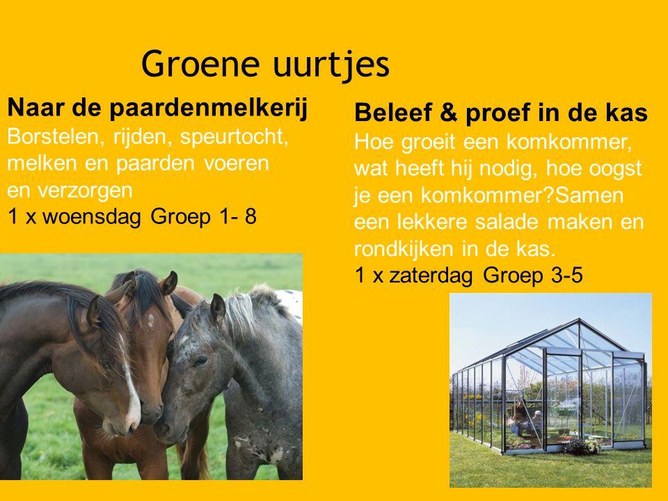 Groene uurtjes Naar de paardenmelkerij Beleef & proef in de kas