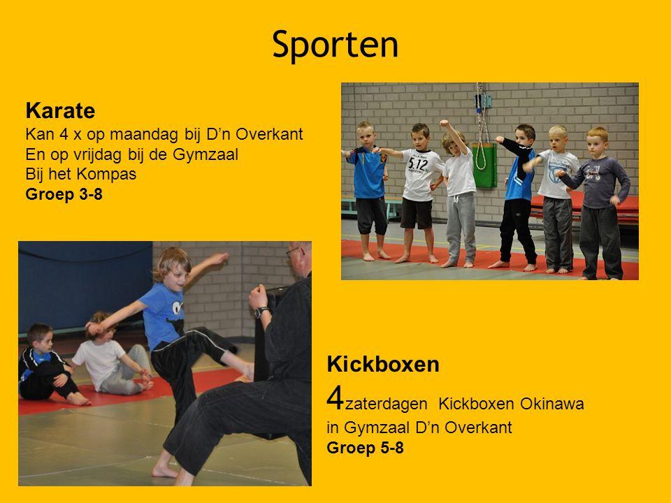 Sporten 4zaterdagen Kickboxen Okinawa Karate Kickboxen