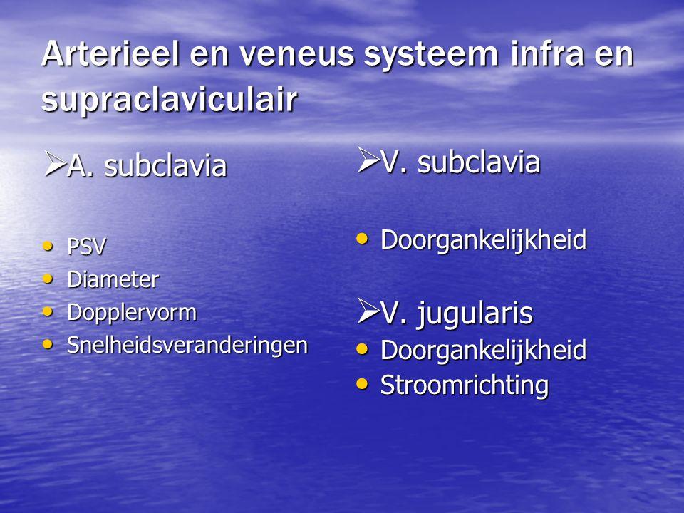 Arterieel en veneus systeem infra en supraclaviculair