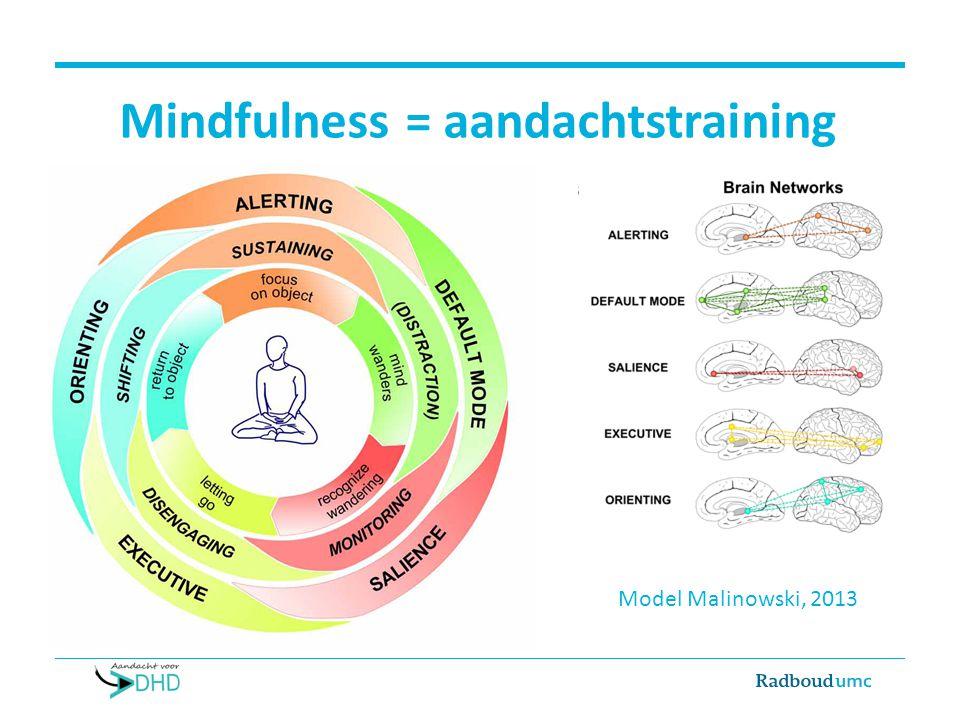 Mindfulness = aandachtstraining