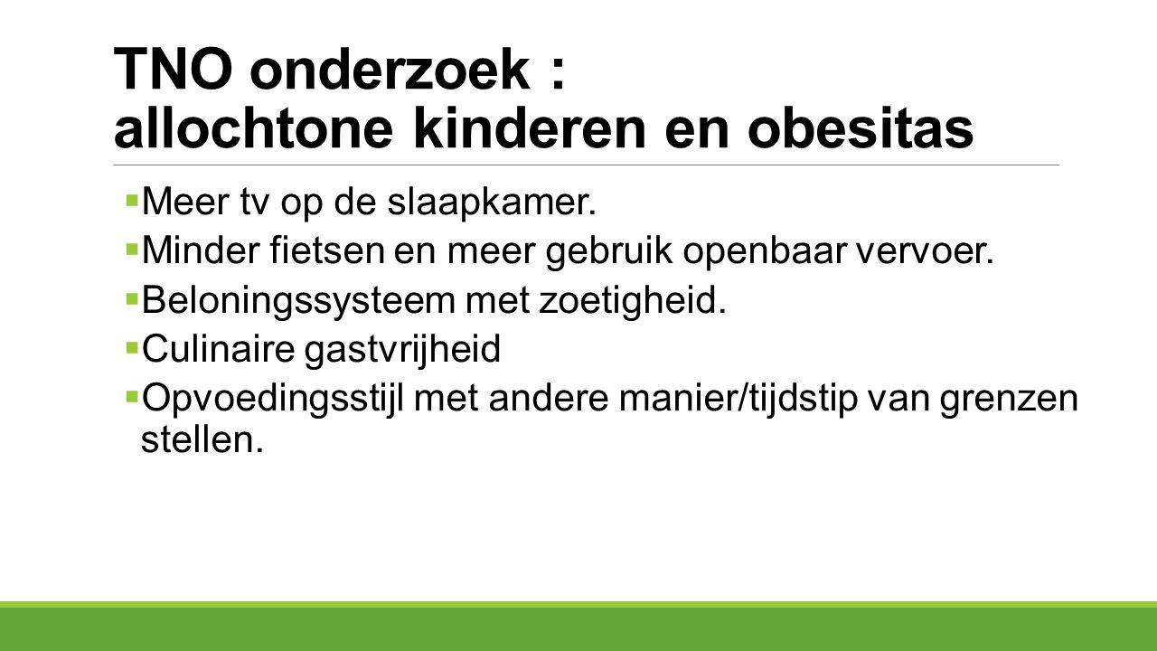 TNO onderzoek : allochtone kinderen en obesitas
