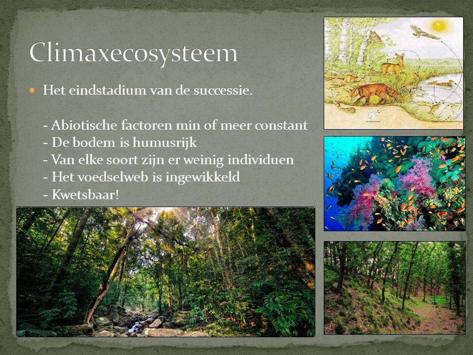 Climaxecosysteem