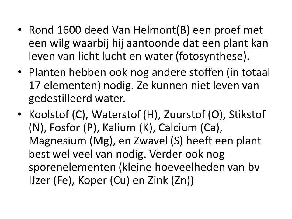 Rond 1600 deed Van Helmont(B) een proef met een wilg waarbij hij aantoonde dat een plant kan leven van licht lucht en water (fotosynthese).