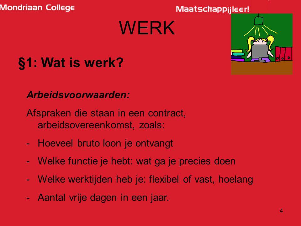 WERK §1: Wat is werk Arbeidsvoorwaarden: