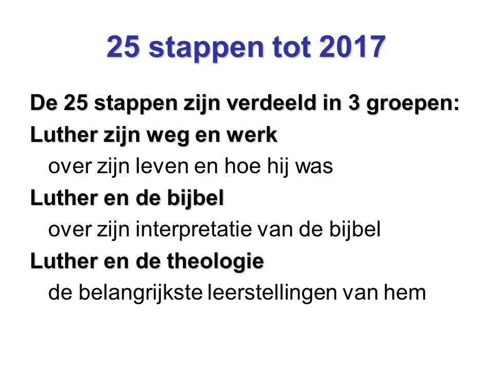 25 stappen tot 2017 De 25 stappen zijn verdeeld in 3 groepen: