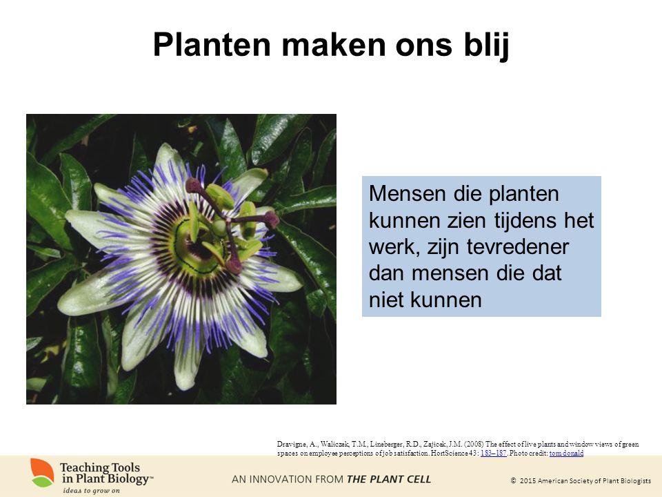 Planten maken ons blij Mensen die planten kunnen zien tijdens het werk, zijn tevredener dan mensen die dat niet kunnen.