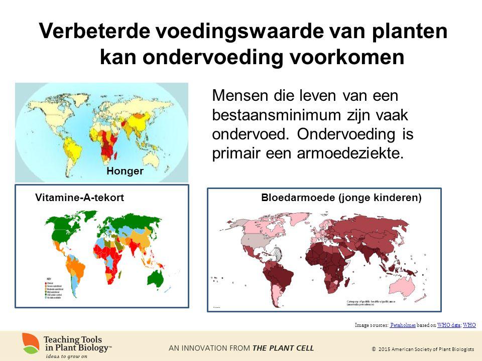 Verbeterde voedingswaarde van planten kan ondervoeding voorkomen