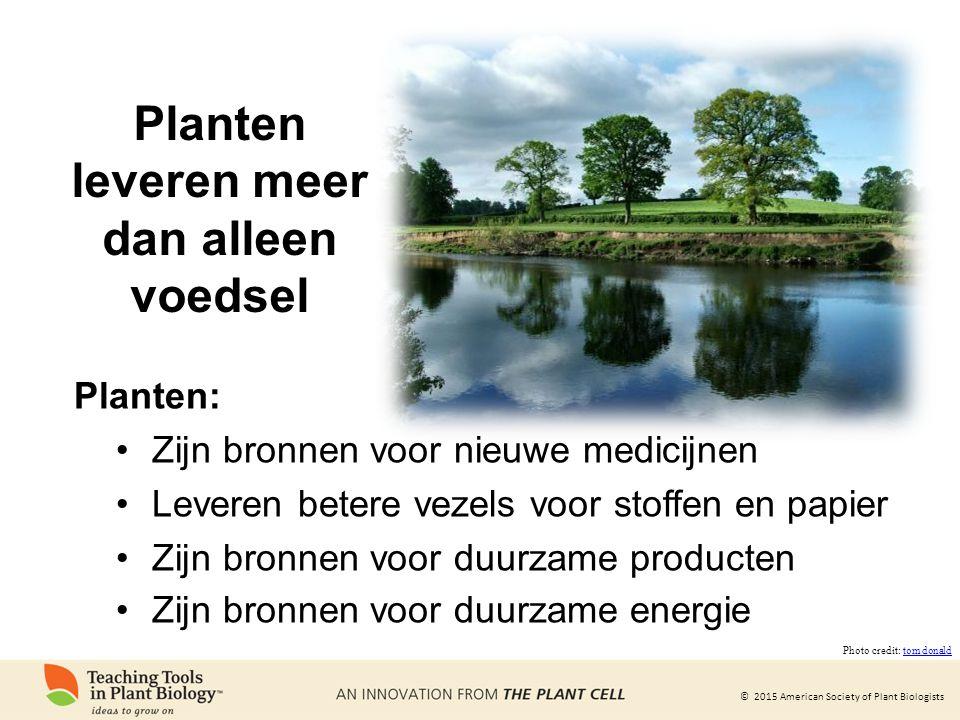 Planten leveren meer dan alleen voedsel