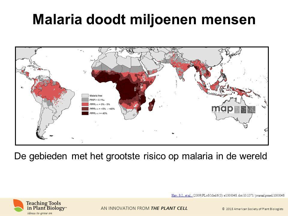 Malaria doodt miljoenen mensen