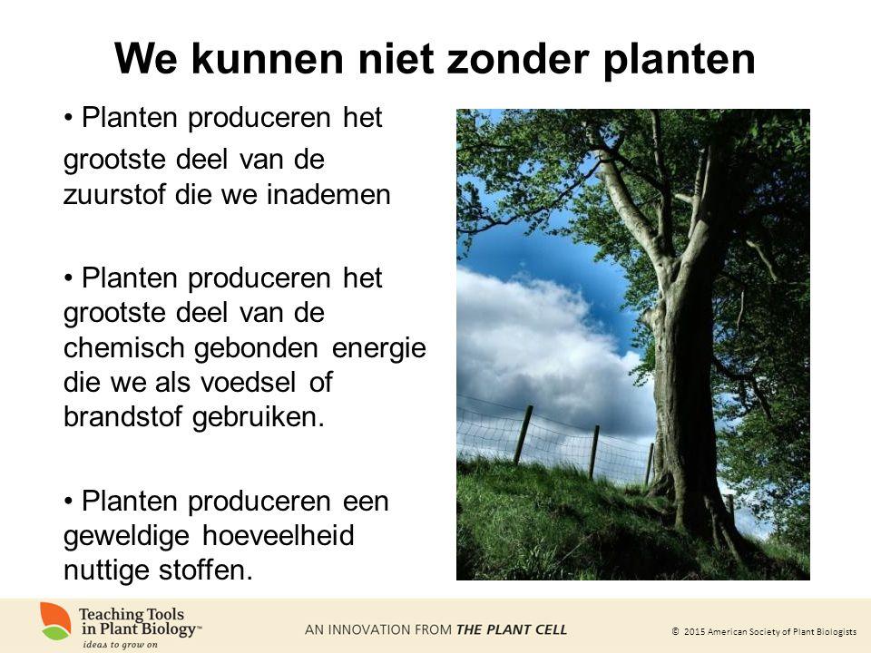 We kunnen niet zonder planten